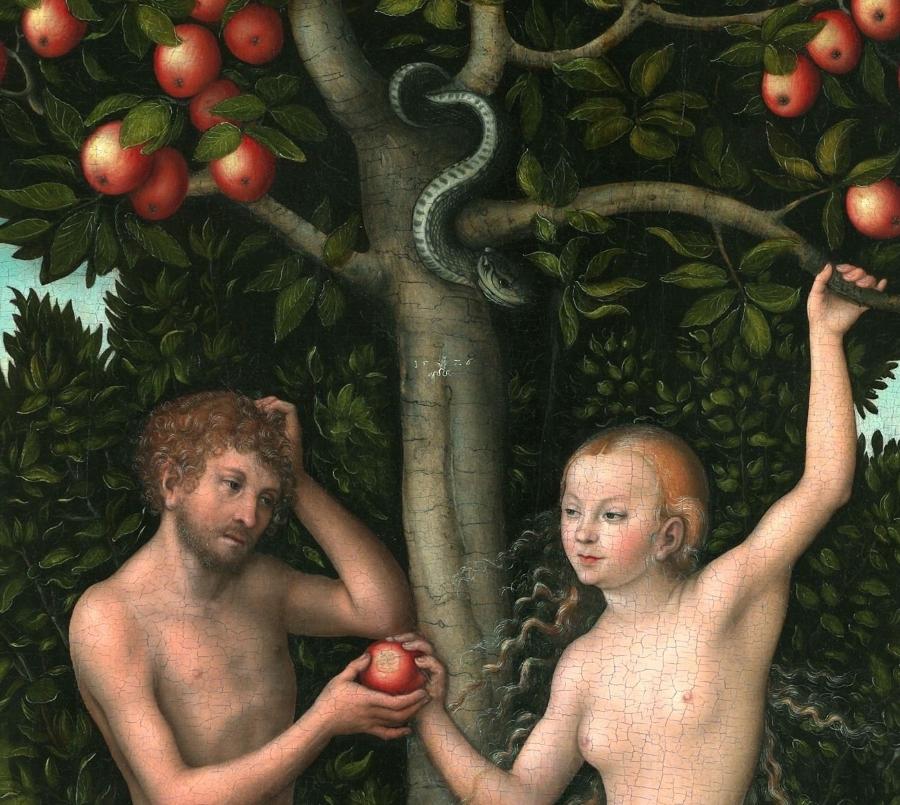 Lucas Cranach d.æ.: Adam og Eva (1526, udsnit)